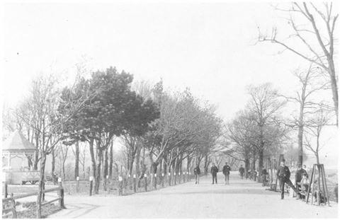 Octagon-Bideford-1890